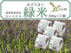 わたなべ農園 幻の古代米『緑米』300g×5個セット【送料無料】