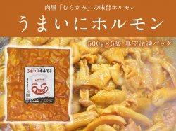ミックスホルモン 「うまいにホルモン」 500g×5袋 大腸 小腸 胃袋 コブクロ【送料無料】