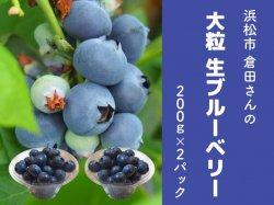 倉田さんのお任せ 大粒の生ブルーベリー200g×2パック【送料無料】
