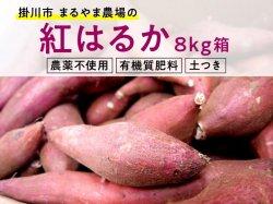 サツマイモ(紅はるか) 8kg箱【送料無料】