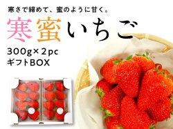 寒蜜いちご(紅ほっぺ)ギフトボックス(2pc)【送料無料】