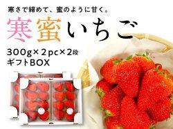 寒蜜いちご(紅ほっぺ)ギフトボックス(2pc×2段)【送料無料】