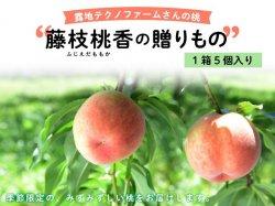 露地テクノファームの桃『藤枝桃香の贈りもの』 1セット(5個)【送料無料】