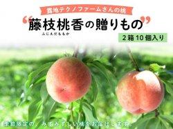 露地テクノファームの桃『藤枝桃香の贈りもの』 2セット(10個)【送料無料】