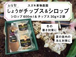 スズキ果物農園の無添加生姜チップス2袋+シロップ1本【送料無料】