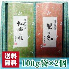 【静岡茶】仙厳の滝・里の恵み100g 袋セット【送料無料】【農家直送】