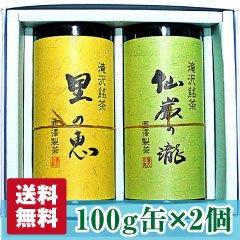 【静岡茶】仙厳の滝・里の恵み100g 缶セット【送料無料】【農家直送】