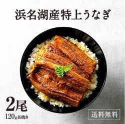 【浜名湖産】特選浜名湖うなぎ蒲焼き2尾【送料無料】