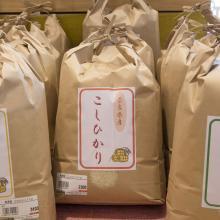 平成30年度  つげの畑高原屋のお米(こしひかり) 5kg