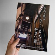 写真で綴る ならまち 奈良公園