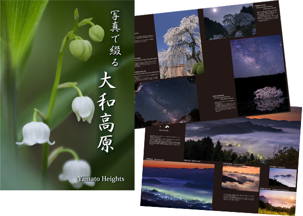 写真で綴る 大和高原