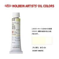 油絵具 20ml H061 アイボリ ホワイト 3本セット