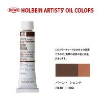 油絵具 20ml H145 バーント シェンナ 3本セット