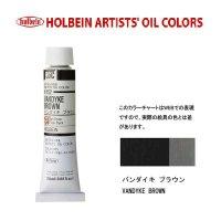 油絵具 20ml H152 バンダイキ ブラウン 3本セット