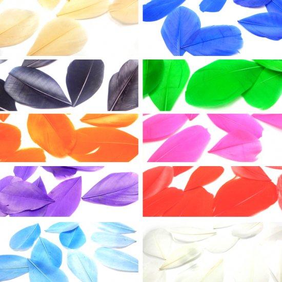 【単色販売】フェザー 10枚セット 染め 羽根 ガチョウ/装飾 素材 アクセサリーパーツ