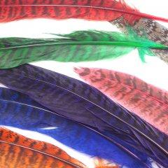 【単色販売】フェザー 10枚セット 染め 羽根 キジ 雉/装飾 素材 アクセサリーパーツ
