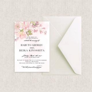 カード型招待状セット<br>【Cherryblossom】