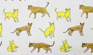 [カット済 50cm×50cm] cat(イエロー)