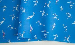 fabric:サッカー(ブルー)