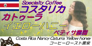 Costa Rica Helsar Nancy Caturra Yellow Honey