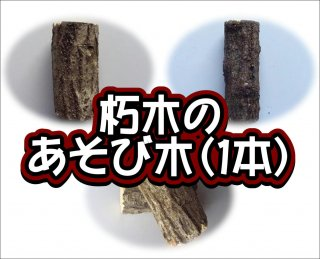 朽木のあそび木(1本)