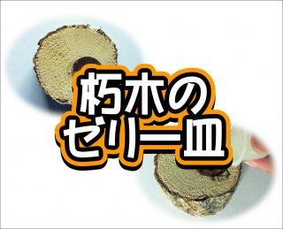 朽木のゼリー皿