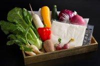 自然栽培の野菜盛合せ バーニャカウダセット 2〜3人前