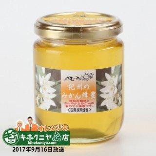 みかんの白い花が咲く時期に採集された、柑橘類の香りと酸味ある|みかん蜂蜜|野村養蜂園