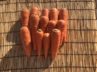 自然栽培 ニンジン 2キロ