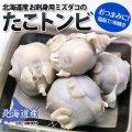 北海道産 たこトンビ(1kg)
