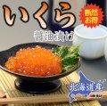 北海道産 いくら醤油漬 500g×2パックセット