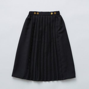 <img class='new_mark_img1' src='https://img.shop-pro.jp/img/new/icons14.gif' style='border:none;display:inline;margin:0px;padding:0px;width:auto;' />front pleats skirt / black /  eLfinFolk  2021ss
