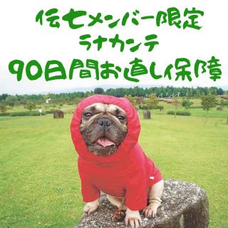 伝七メンバー限定【90日間お直し保障】Ranacante
