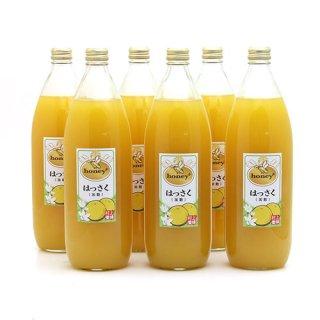 honey+はっさくジュース6本