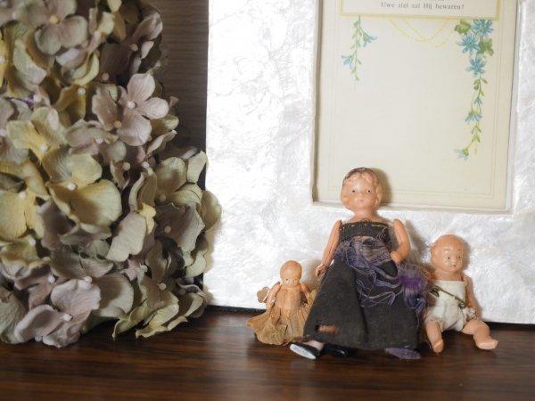 doll antiquusの画像