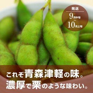 青森県産枝豆 在来毛豆 1200g 【送料込】