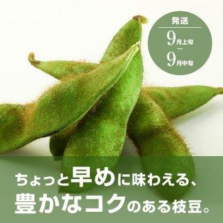 青森県産枝豆 あおもり福丸(早生毛豆) 1200g 【送料込】