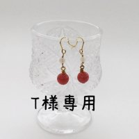<img class='new_mark_img1' src='https://img.shop-pro.jp/img/new/icons43.gif' style='border:none;display:inline;margin:0px;padding:0px;width:auto;' />T様専用