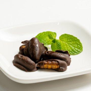 カイコチョコレート 10g