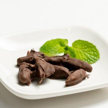 フタホシコオロギチョコレート 10g
