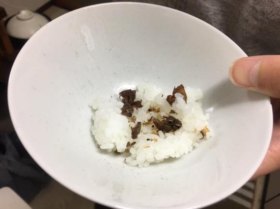 食用 タランチュラ