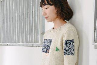 色遊びセーター