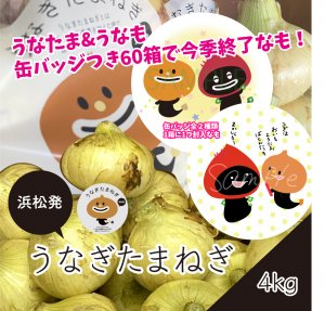 <img class='new_mark_img1' src='https://img.shop-pro.jp/img/new/icons12.gif' style='border:none;display:inline;margin:0px;padding:0px;width:auto;' />うなぎたまねぎ(新玉)4kg常温発送