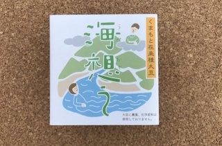 海想う 熊本県産 在来種ハッテング大豆使用 40g×2パック