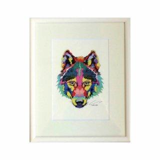 Coyote / セミオーダー