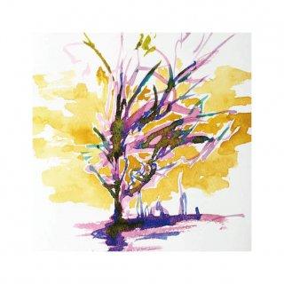 街路樹のためのドローイング#21