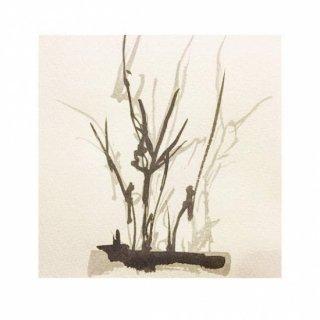 街路樹のためのドローイング 水墨の場合#1(M)