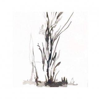 街路樹のためのドローイング 水墨の場合#3(M)
