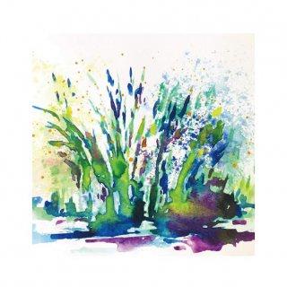 水草のためのドローイング #1(M)