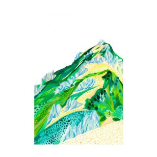 tubakurodake燕岳 no101